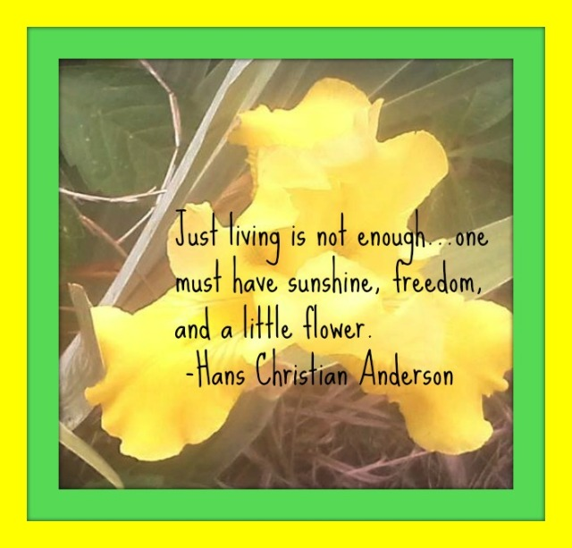 flower with quote