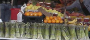boston-food-market-cropped