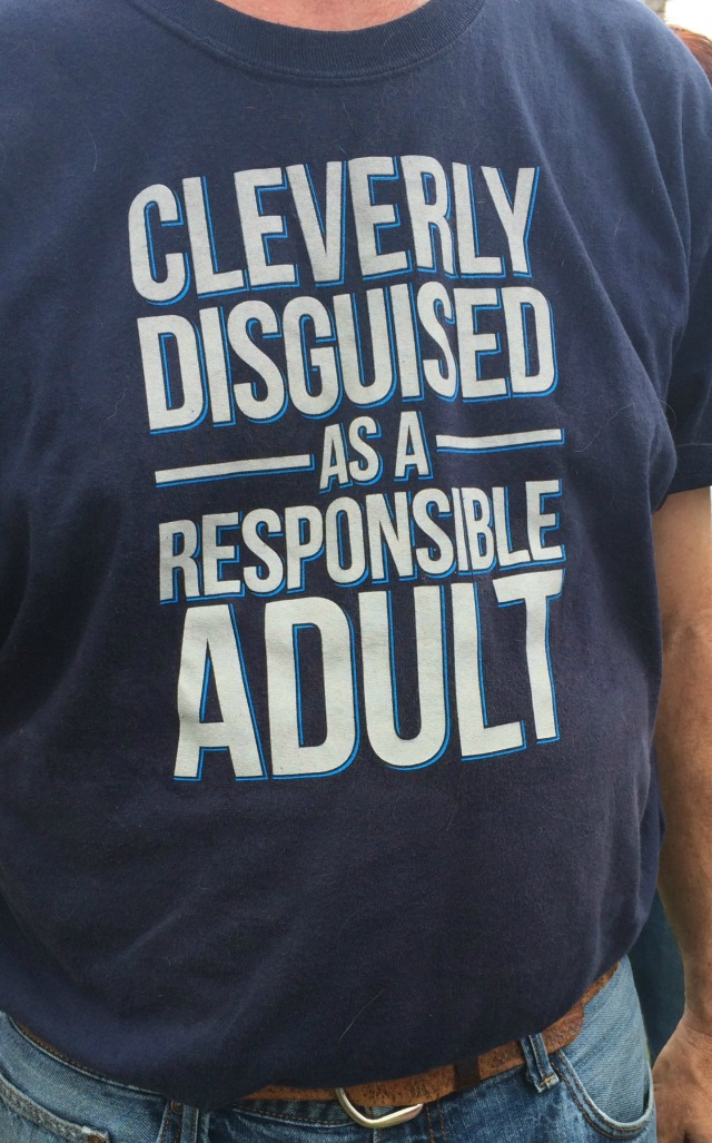 cleverly disguised as a responsible adult tee-shirt-cropped