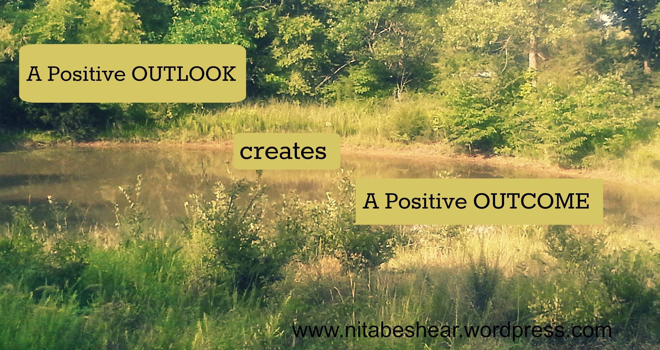positive outlook saying on pond